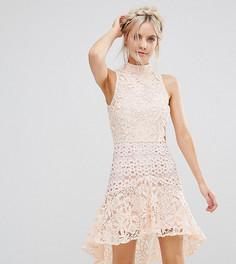 Кружевное премиум-платье мини с высоким воротом True Decadence Petite - Розовый