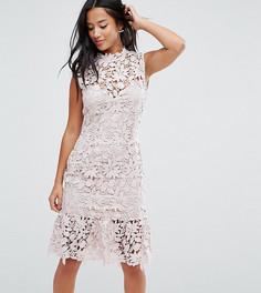 Кружевное платье с высоким вырезом и баской Paper Dolls Petite - Розовый