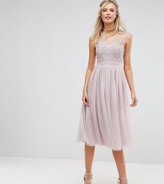 Платье миди для выпускного из тюля с кружевной аппликацией Little Mistress Tall - Фиолетовый