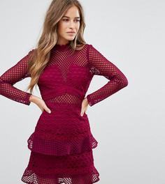 Короткое приталенное сетчатое платье с оборкой True Decadence Petite - Красный