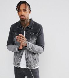 Черная с серым джинсовая куртка Liquor N Poker - Черный