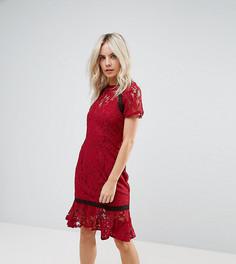 Кружевное платье с короткими рукавами Paper Dolls Petite - Красный