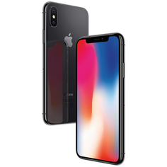 Смартфон Apple iPhone X 64GB Space Grey (MQAC2RU/A)