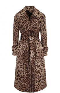 Пальто с поясом и леопардовым принтом Dolce & Gabbana
