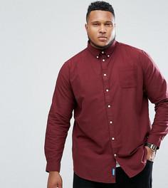 Бордовая оксфордская рубашка Duke PLUS - Красный