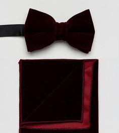 Бордовый бархатный галстук-бабочка и платок для пиджака ASOS - Красный