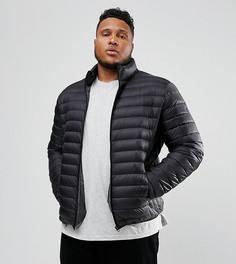 Пуховая дутая куртка черного цвета Schott PLUS Oakland - Черный