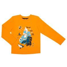 """Футболка с длинным рукавом для мальчика Barkito """"Айсберг 1"""",жёлтая"""