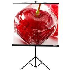 Экран для видеопроектора ViewScreen Clamp 180*180MW