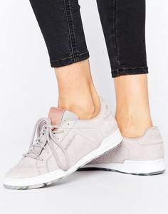 Серые кроссовки Reebok Npc Ii - Серый
