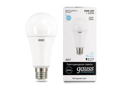 Лампочка Gauss Elementary A67 25W E27 6500K 73235
