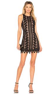 Кружевное мини-платье brianna - NBD