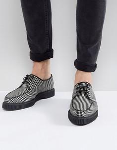 Криперы со шнуровкой ASOS - Мульти
