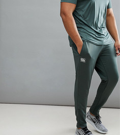 Суженные книзу эластичные брюки цвета хаки Canterbury PLUS эксклюзивно для ASOS - Зеленый