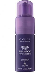 Сухой шампунь для волос Anti-aging Sheer Alterna