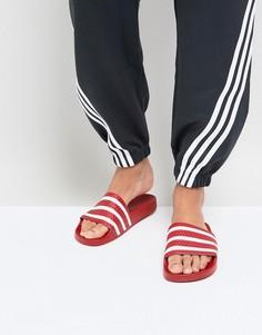 Красные шлепанцы adidas Originals Adilette 288193 - Красный