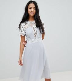 Платье миди со вставками и кружевной отделкой Elise Ryan Petite - Серый