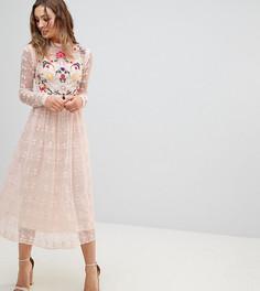 Короткое приталенное платье из кружева с вышивкой Frock And Frill Premium - Розовый