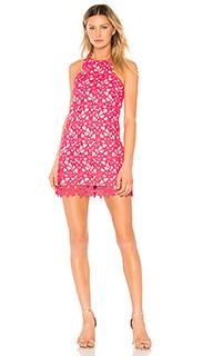 Цельнокройное кружевное платье caspian - Lovers + Friends