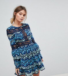 Короткое приталенное платье с вышивкой и контрастным кружевом Dolly & Delicious - Мульти