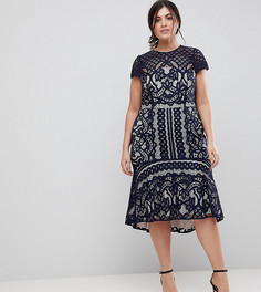 Кружевное платье Coast Plus Dee Dee - Темно-синий