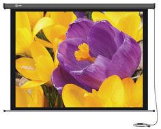 Экран CACTUS Professional Motoscreen CS-PSPM-168x299, 299х168 см, 16:9, настенно-потолочный