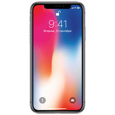 Смартфон APPLE iPhone X 256Gb, MQAF2RU/A, серый