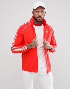 Красная спортивная куртка adidas Originals adicolor Superstar CW1310 - Красный