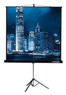 Экран LUMIEN Master View LMV-100108, 244х183 см, 4:3, напольный