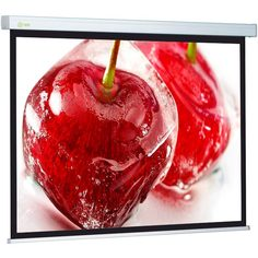 Экран для видеопроектора Cactus CS-PSW-180x180
