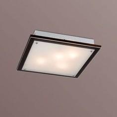 Потолочный светильник Sonex 3242V