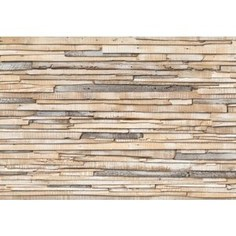Фотообои Komar Whitewashed Wood 368 х 254см. (8-920)