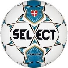 Мяч футбольный Select Forza арт. 811108-002 р.5