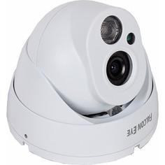 IP-камера Falcon Eye FE-IPC-DL100P