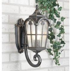 Уличный настенный светильник Elektrostandard 4690389017360