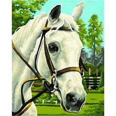 Картина по номерам Schipper 24х30 см, Белая лошадь