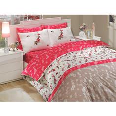 Комплект постельного белья Hobby home collection Семейный, ранфорс, Ilya, коричневый (1501000237)
