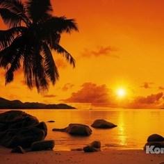 Фотообои Komar Sunset (3,68х2,54 м) (8-316)