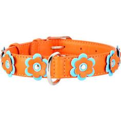 Ошейник CoLLaR Glamour с украшением аппликация ширина 25мм длина 38-49см оранжевый для собак (35034)