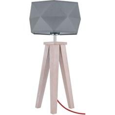 Настольная лампа Spot Light 6834632