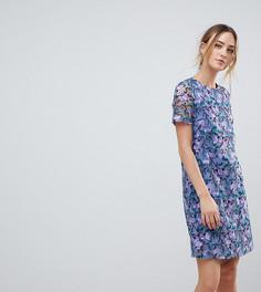 Платье-трапеция с вышивкой Dolly & Delicious Tall - Мульти
