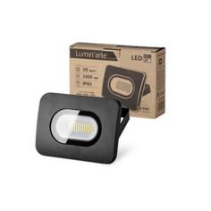 Прожектор Wolta LFL-30W/05 30W 220V 5500K SMD IP65 Black