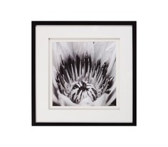Постер с паспарту в раме Soft Sharpness / 13130508 M Style