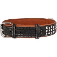 Ошейник CoLLaR SOFT кожаный двойной с металлическими украшениями ширина 35мм длина 57-71см черный верх, коричневый низ для собак (7225)