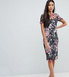 Кружевное платье-футляр с цветочным принтом Paper Dolls Tall - Мульти