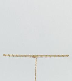 Позолоченное ожерелье-чокер Kinglsey Ryan - Золотой