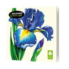 Салфетки бумажные `BULGAREE GREEN` трехслойные Ирис 20 шт