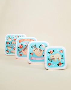 Коробки для ланча с принтом ленивца Fizz - Мульти