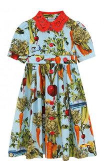 Хлопковое платье с принтом и кружевным воротником Dolce & Gabbana