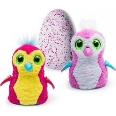 Интерактивный питомец Hatchimals Пингвинчик розовый, вылупляющийся из яйца (1 игрушка)